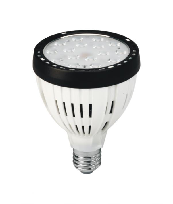 LED PAR 30